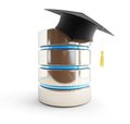 Database of graduates school children students d illustrations on a white background Royalty Free Stock Images