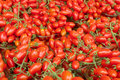 Date cherry tomatoes piles of fresh Royalty Free Stock Images
