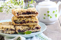 Date and oat bars on plate Stock Images
