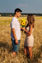 Date in a wheat field portrait of young inlove couple have Royalty Free Stock Photos