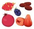 Dates, Dragonfruit, blackberry, Pomegranate, and R