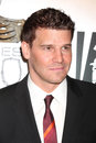 David Boreanaz Stock Image