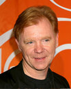 David Caruso Royalty Free Stock Photos