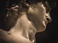David by Michelangelo neck vein detail Royalty Free Stock Photo
