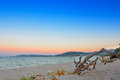Dawn in alghero maria pia beach at sardinia Stock Photography