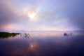 Dawn over lake with reeds reflected in the water Royalty Free Stock Image