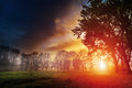 Dawn in a park sun rising above the ground Royalty Free Stock Image