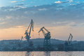 Dawn at the port with large cranes Royalty Free Stock Images