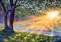 Dawn sunset by river. Morning in forest on pond water. Beautiful landscape acrylic watercolor oil painting