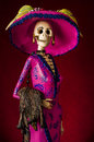 Day of the dead traditional mexican catrina elegant skeleton Royalty Free Stock Image