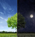 Day and night concept conceptual image of opposition Stock Photography