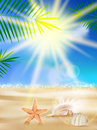 Day with sand shells and palm leaves beautiful seaside view on sunny eps Royalty Free Stock Photography