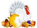 Day of Thanksgiving turkey on white background.