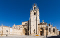 Day view of Palencia Cathedral Royalty Free Stock Photo
