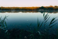 Daybreak over lake calm water of with sunlit banks Stock Photos