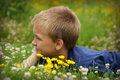 Daydreaming boy a young laying in a field of clovers and some yellow flowers about the future Royalty Free Stock Photo