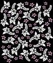 De bloemen van Hawaï black&white. Royalty-vrije Stock Foto's