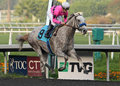 De flash-back wint Zijn Eerste Race! Royalty-vrije Stock Foto