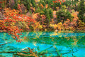 De herfst in Jiuzhaigou, Sichuan, China Stock Foto