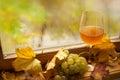 De herfst witte wijn Royalty-vrije Stock Afbeeldingen
