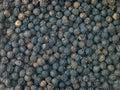 De Korrels van de zwarte peper Stock Fotografie