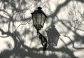 De lamp Stock Foto's