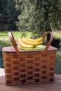 De mand en het fruit van de picknick in openlucht Stock Foto