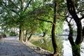 De old village water stad van hong cun Royalty-vrije Stock Afbeelding