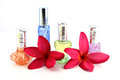 De röda blommorna och apelsinen blått gräsplan violet perfume flaskor Arkivfoto