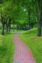 De steenweg van de tuin in park Stock Fotografie
