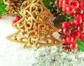 De tak van Kerstmis van bessen met een gouden bont-boom Stock Foto's
