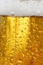 De textuur van het bier Stock Afbeelding
