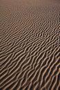 De textuur van het zand Stock Fotografie