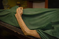 The dead body focus on hand decay Royalty Free Stock Photos