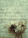 Dead dahlias grunge on vintage page student workbook with dried dahlia flowers Stock Image