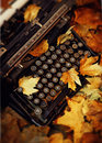 Dead Leaves and Typewriter Stock Photo