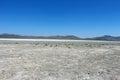 Dead salt lake in mongolia darkhan aimak Stock Photography