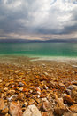 Dead sea israel at the the coast Stock Image