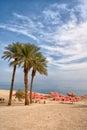 Dead sea israel ein gedi oase at the Stock Photo