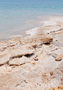 Dead sea salt Royalty Free Stock Photo
