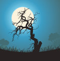 Dead Tree Silhouette In The Moonlight Royalty Free Stock Photography