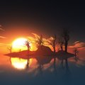 Dead trees island and sunset at Stock Image