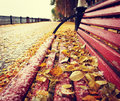 Dead yellow leaves on a painted bench in the park Royalty Free Stock Photo
