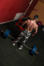Deadlift heavy weights bodybuilder preparing for of barbell Royalty Free Stock Image