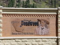 Deadwood. Royalty Free Stock Photo