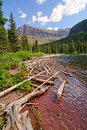 Deadwood on an Alpine Lake Stock Photography