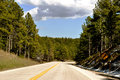 Deadwood winding road south dakota Royalty Free Stock Image