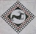 Dear in a decorative quad on the Chiesa dei Santi Giovanni e Reparata Royalty Free Stock Photo