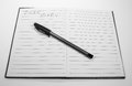 """Dear diary image of or journal book opened to a blank page and a black pen with the written words """"dear diary"""" Stock Photo"""