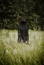 Death standing on a field Royalty Free Stock Photos